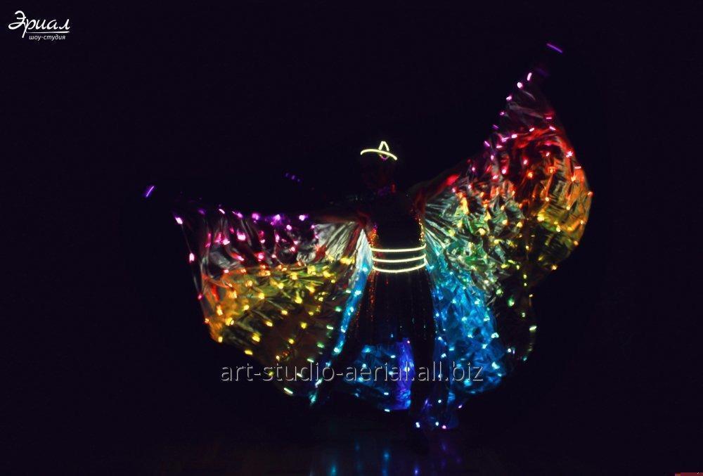 Заказать Шоу бабочки | Light show Одесса | LED wings