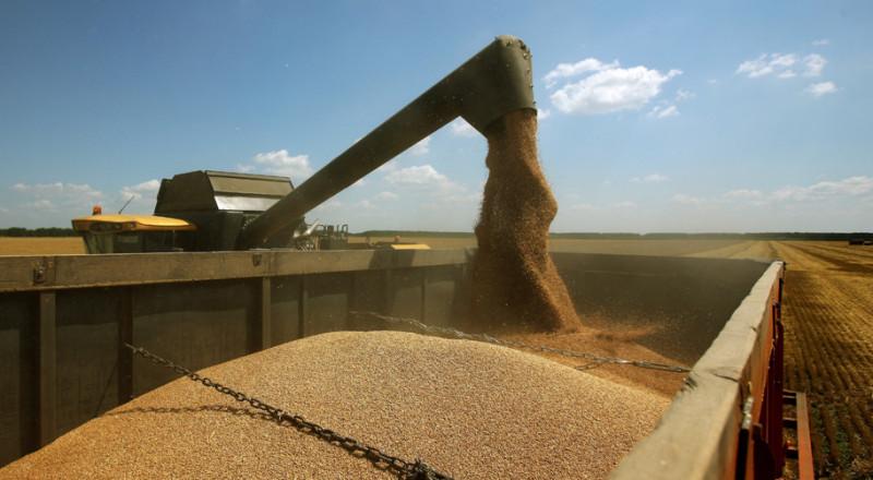 Заказать Сбор урожая зернових