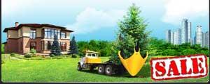 Заказать Пересадка деревьев крупномеров