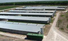 Строительство объектов сельскохозяйственного