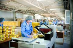 Сортировка продукции по внешнему виду упаковки,Услуги цеха переупаковки