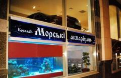 Изготовление морских аквариумов