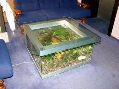 Обслуживание аквариумов, чистка аквариума,