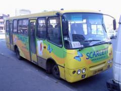 Advertizing by trams trolleybuses Pokleyk's