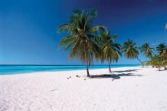 Обустройство и реставрация пляжей