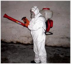 Уничтожение грибков