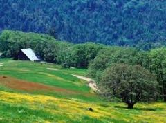 Проекты отводов земельных участков