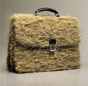 Маркетинговые исследования аграрного рынка