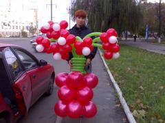 Цветы из воздушных шариков, букеты гелиевых шаров, фигуры из шариков
