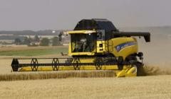 Harvesting by grain combines