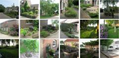 Ландшафтный дизайн, проект, озеленение, дизайн