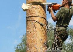 Удаление деревье, кронирование деревьев, обрезка