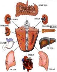 Pancreatitis diagnózállása és kezelése