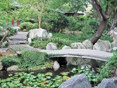Improvement of a garden