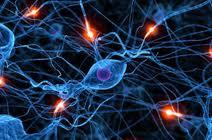 Лечение неврологических заболеваний в санатории