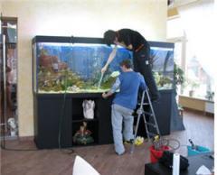 Обслуживание аквариумов, уход за аквариумом,