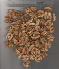 Переработка и реализация орехов