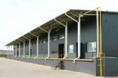 Rent of warehouse platforms