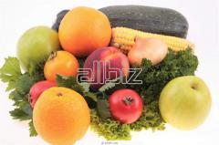 Оптовая торговля сельскохозяйственной продукцией