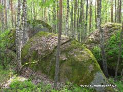 Зеленый туризм, маршрут выходного дня, Каменное