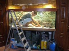 Обслуживание аквариумов - Рыбки, аквариумы