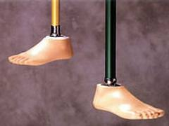 Foot artificial limbs