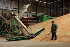 Заготовка, сушка, хранение семенного зерна.