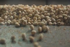 Переработка орехов