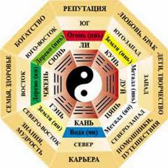 Consultation according to Fan - Shui of a