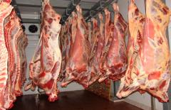 Услуги по замораживанию мяса и мясных...