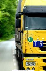 Cargo delivery automobile across Ukraine