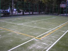Реконструкция и оснащение спортивных сооружений