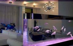 Обслуживание аквариума Киев и Киевская область