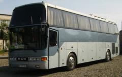 Поездки на комфортабельных автобусах с Юга Украины
