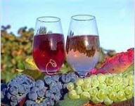 Дегустационные туры: Праздник молодого вина, Закарпатское Божоле