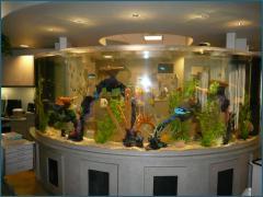 Ремонт стеклянных крупногабаритных аквариумов