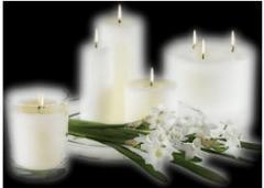 Организация похорон, услуги ритуальные