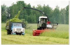 Services of silage (fodder harvesting) equipmen