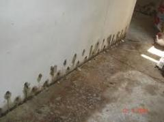 Waterproofing works with primeneiy materials