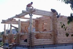 Услуги строительных бригад. Бригада строителей выполнит сборку деревянных домов