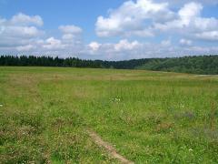 Продається земельна ділянка комерційного призначення.