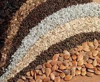 Переработка сельхозпродукции, доработка зерновых, масличных культур