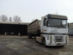 Services in transportation of grain