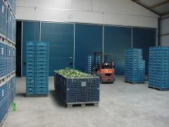 Овощехранилище с принудительным охлаждением...