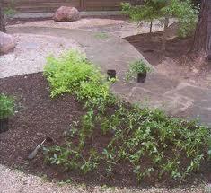 Full replacement of soil in garden