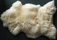 Выделка и крашение натурального меха овчины
