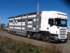 Перевозка живых животных, домашнего скота по