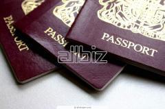 Оформление загранпаспортов и детских проездных