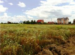 Продажа земельного участка под Киевом