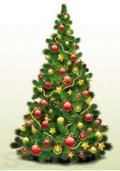 Доставка новогодней елки на дом (с установкой)